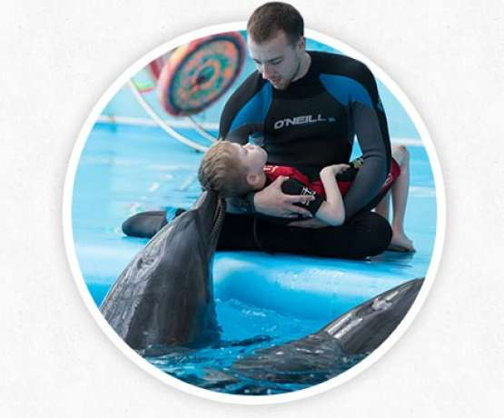 Dolphin therapy action mechanisms - photos and information at therapynemo.com
